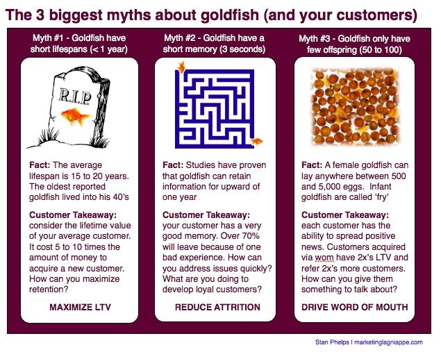 3 biggest myths about goldfish